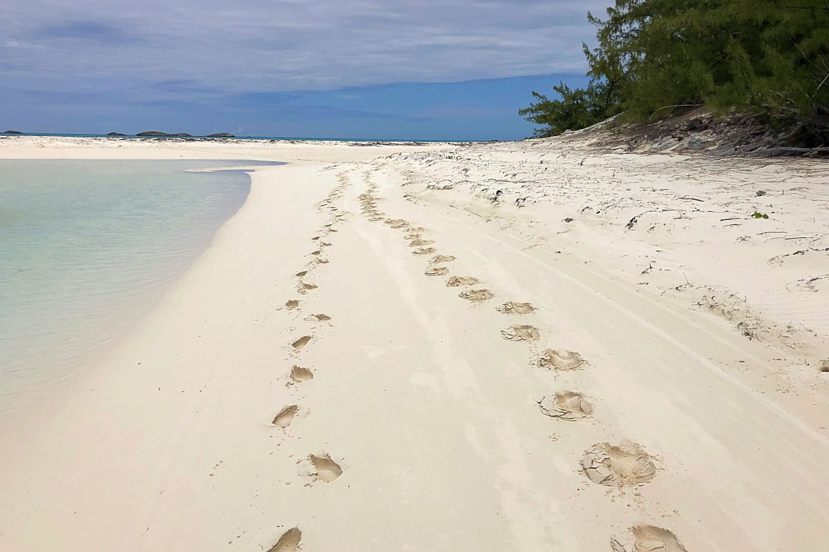 Christmas in Green Turtle Cay