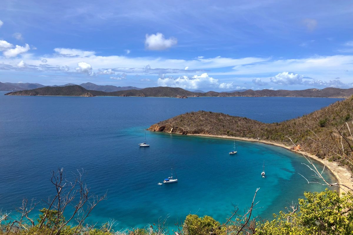 BVI: Exploring Nature's little Secret